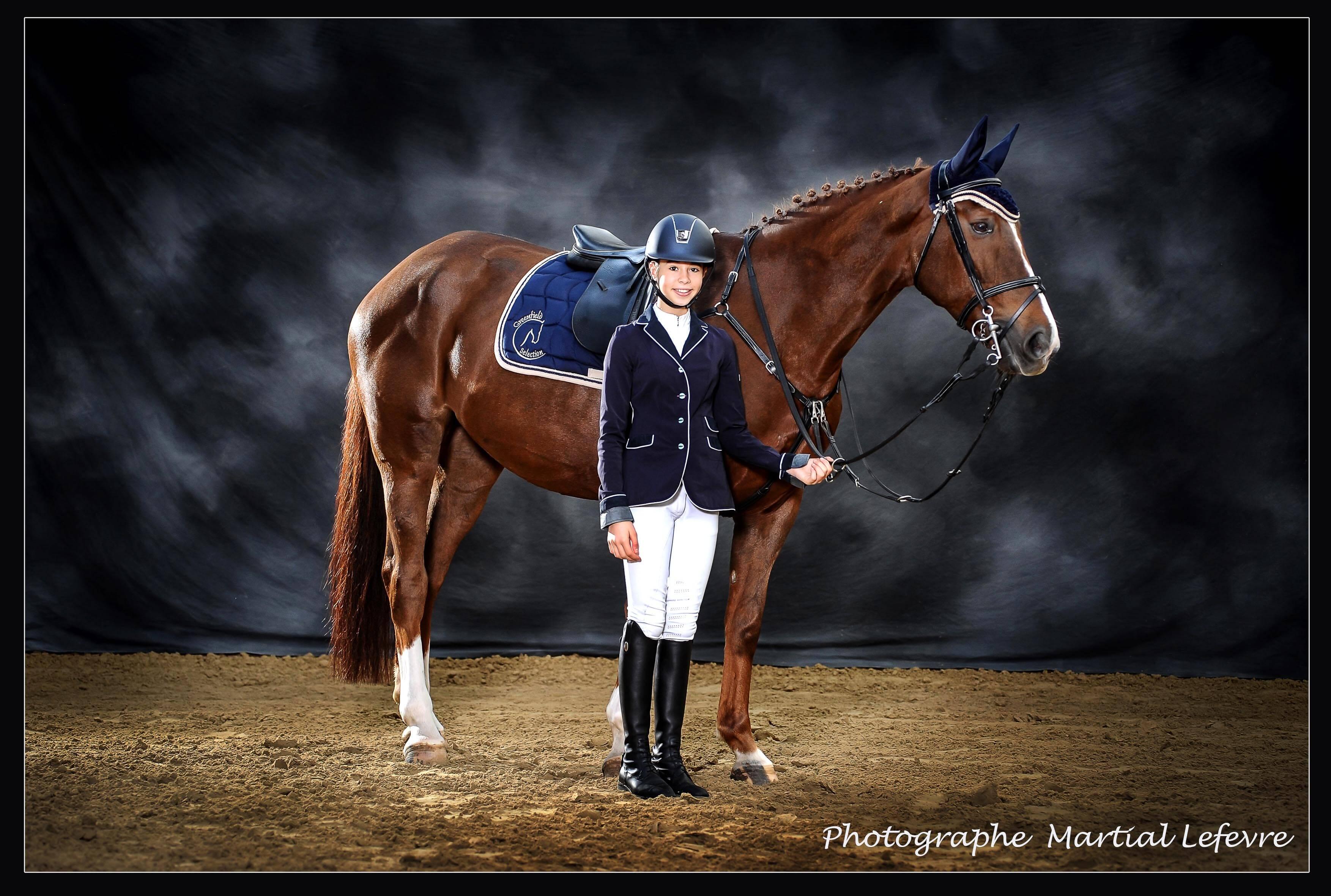 photographe chevaux martial lefevre. Black Bedroom Furniture Sets. Home Design Ideas