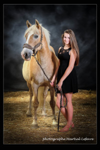 Photographe chevaux belgique