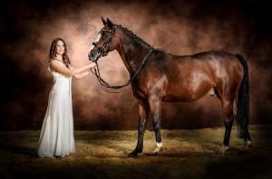 photo studio chevaux-32
